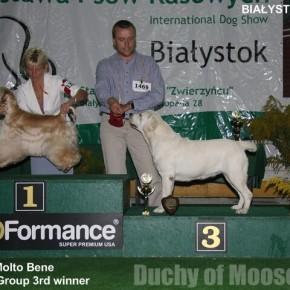 Bialystok 2009: NADIA - CACIB, BOB i BOG3