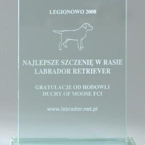 13th Spring CAC Dog Show, Nowy Dwór Mazowiecki, 5-6.04.2008